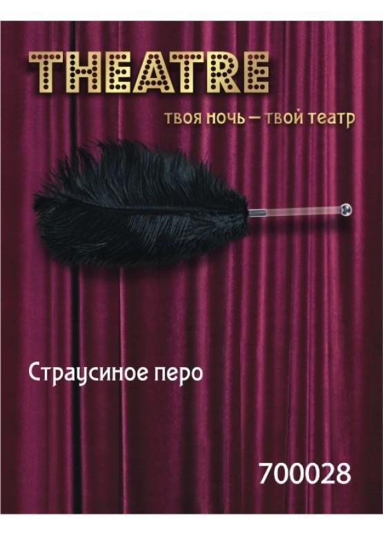 Перо TOYFA Theatre страусиное черное 40 см