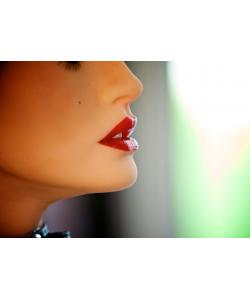 Супер-релистичная кукла София